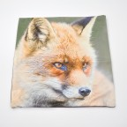 Friendly Fox Cushion Cover