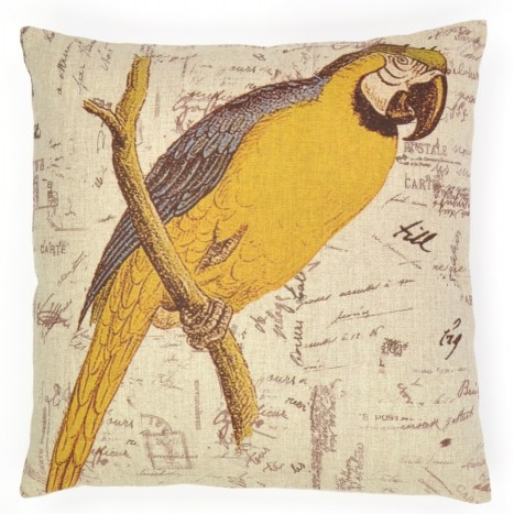 Stunning Macaw Cushion