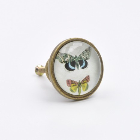 British Butterflies Cupboard Knob - B