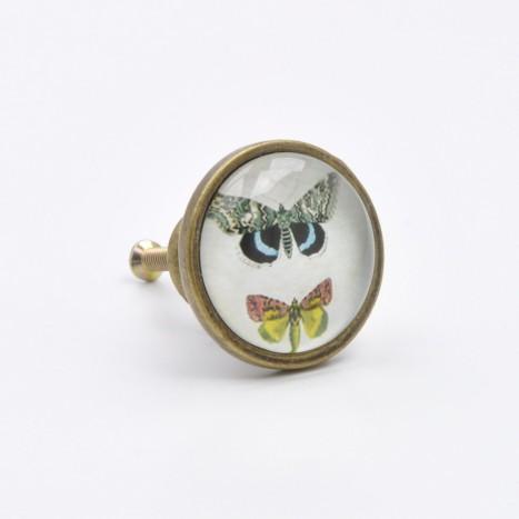British Butterflies Cupboard Knob - B
